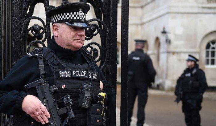 В Лондоне 14-летняя девочка задержана по подозрению в подготовке теракта