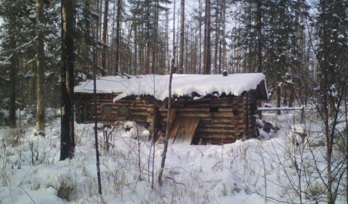 ВУсть-Илимском районе медведь утащил уохотника два ружья