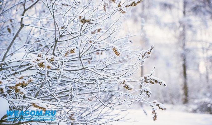 Метеорологи прогнозируют морозные ночи иснег вИркутске доконца недели