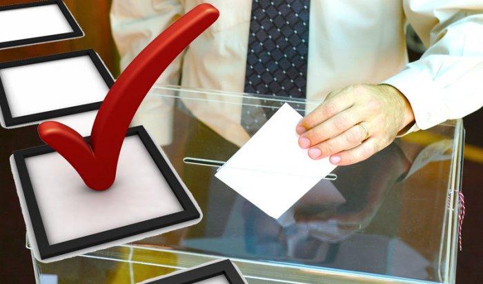 ЦИК приняла документы от 15 самовыдвиженцев на выборы президента РФ
