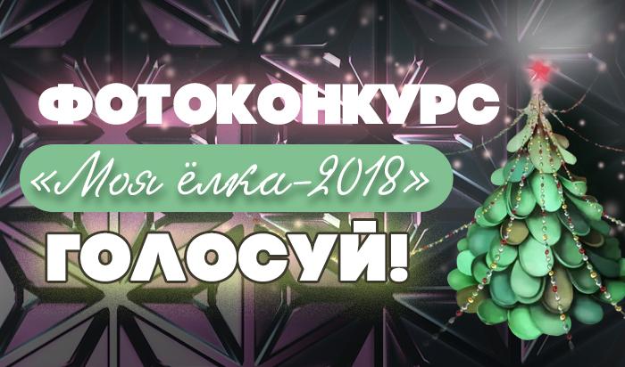 WEACOM.RU запустил голосование в фотоконкурсе «Моя ёлка-2018»