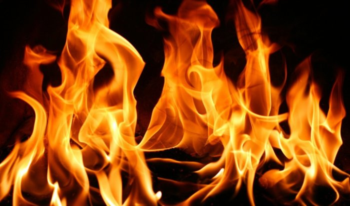 В Иркутске ночью 30 января на острове Конный сгорел автомобиль BMW