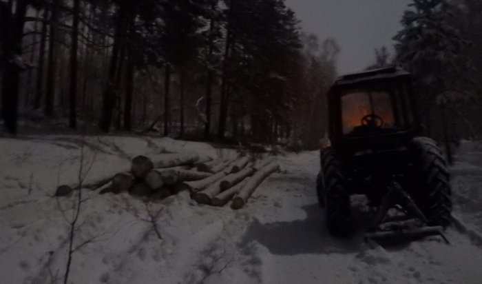 В Иркутской области задержано несколько групп нелегальных лесозаготовителей
