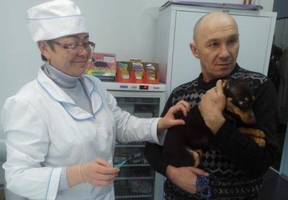 В Слюдянском районе открылась первая ветлечебница