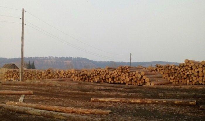 Организация изКуйтунского района похитила леса на12млн рублей