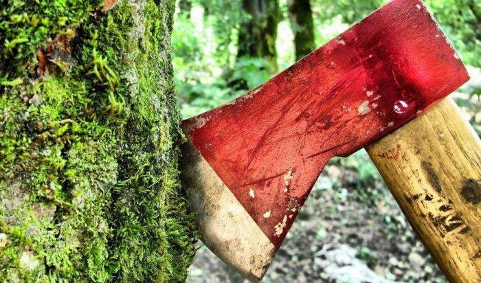 В Приангарье работник лесничества осужден за организацию незаконной рубки древесины