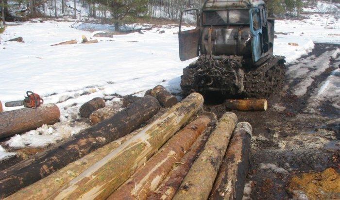 На минувшей неделе в лесах Иркутской области задержано пять бригад «черных» лесорубов