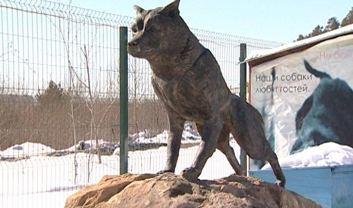 В иркутском питомнике установили памятник легендарному псу Балто