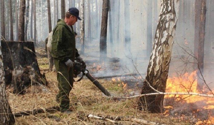 ВПриангарье ликвидировали девять лесных пожаров 26апреля