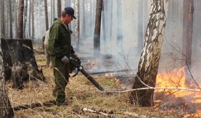 Пять лесных пожаров ликвидировали вИркутской области 5мая