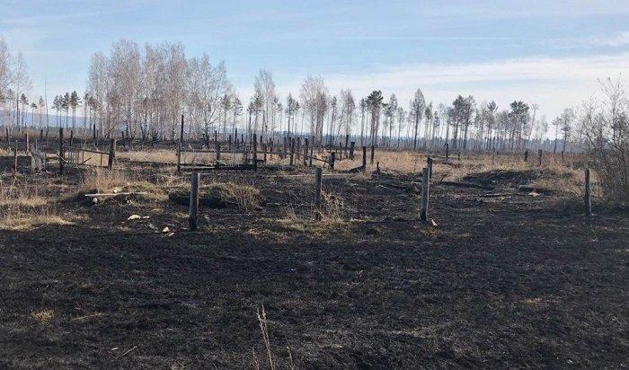 Четыре лесных пожара возникло повине жителей Приангарья 14мая