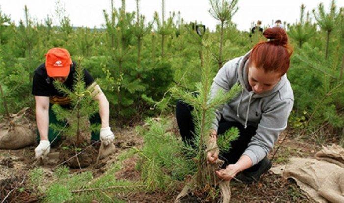 НаСинюшиной горе пройдет акция «Посади дерево— подари планете жизнь» 26мая