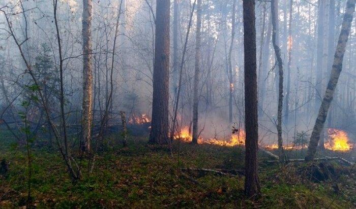 ВУсть-Илимске лесной пожар чуть неперешел надетский лагерь идом престарелых