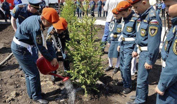 Сотрудники МЧС подарили жителям Иркутска новый сквер