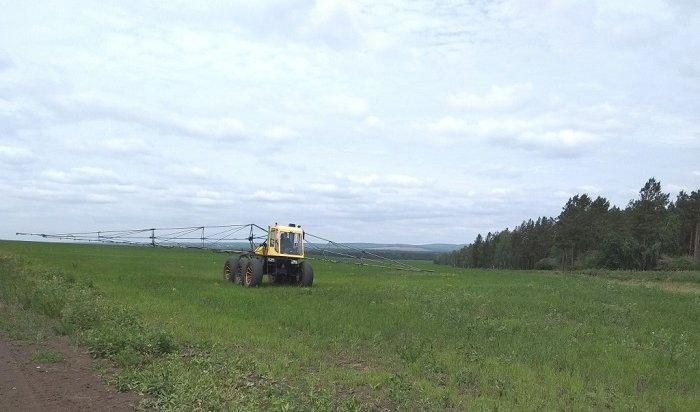 ВИркутской области обрабатывают поля отсаранчи