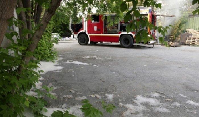 Сотрудники МЧСПриангарья просят неподжигать тополиный пух