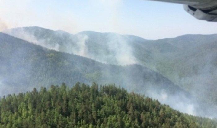 ВПриангарье прогнозируют сложную обстановку слесными пожарами вближайшие дни