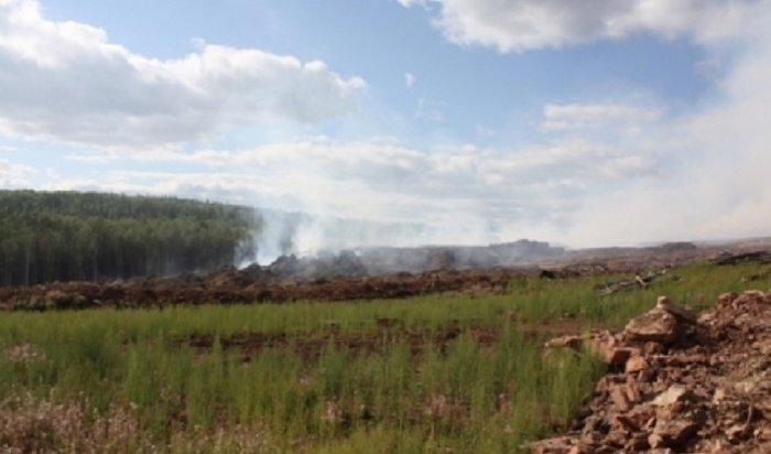 Натерритории Приангарья действовало 87лесных пожаров утром 3июля