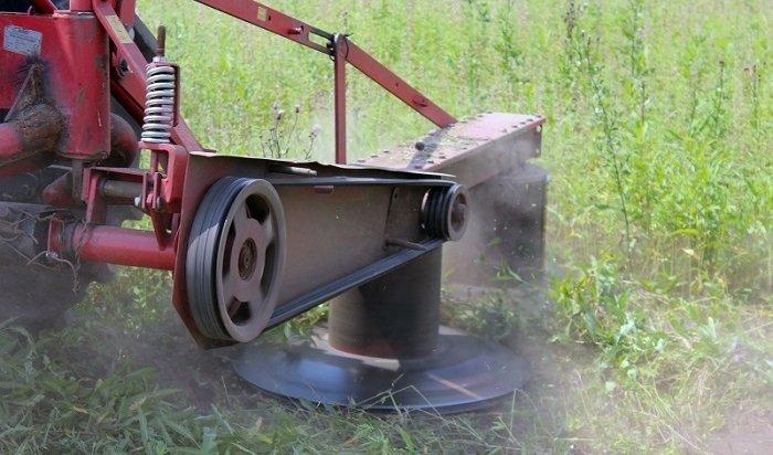 ВПриангарье уничтожают поля сдикорастущей коноплей (Видео)