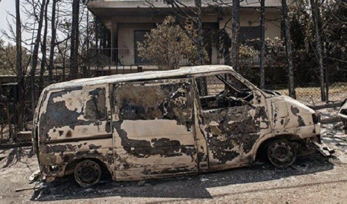 Лесные пожары вГреции унесли жизни 83человек (Видео)