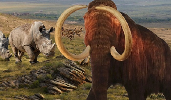 На«кладбище мамонтов» Юнюген вЯкутии найден мамонт смягкими тканями ишерстью