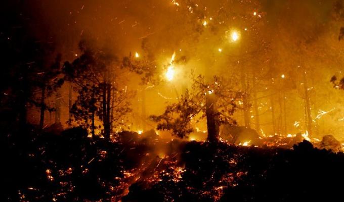 ВИркутской области свирепствуют лесные пожары (Видео)