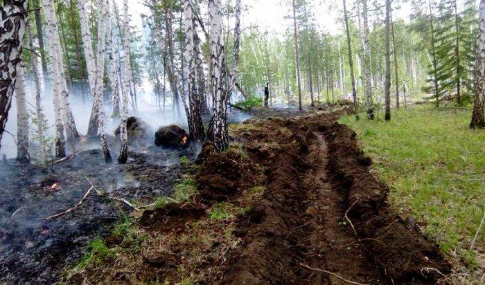 Лесной пожар тушат в6кмотпоселка Большая Речка под Иркутском