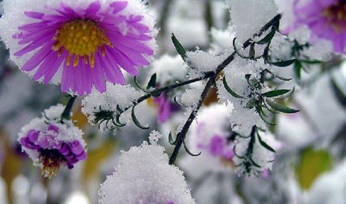 Первый снег идет вИркутске (Видео)