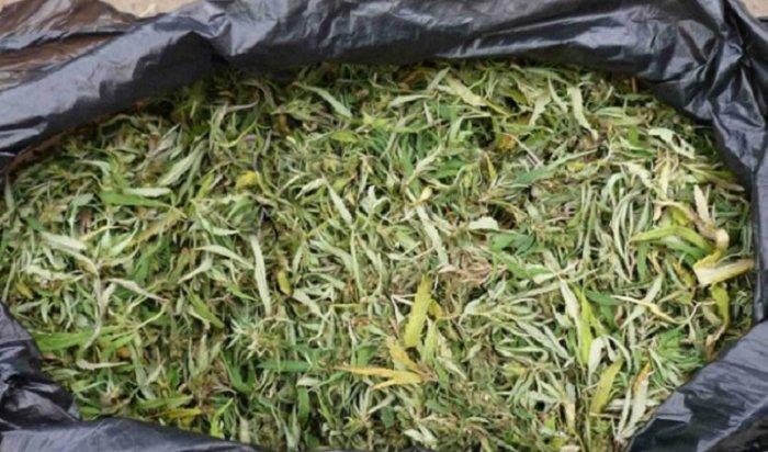 Житель Усолья-Сибирского разгуливал погороду cмешком марихуаны