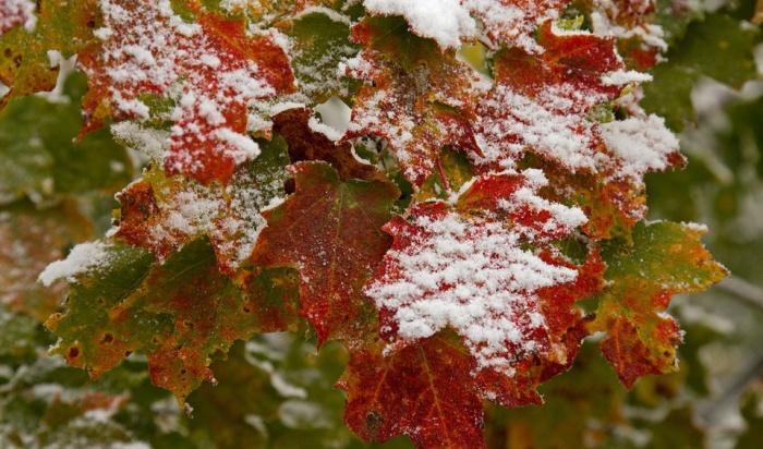 Холодная погода снова вернется вИркутск досубботы