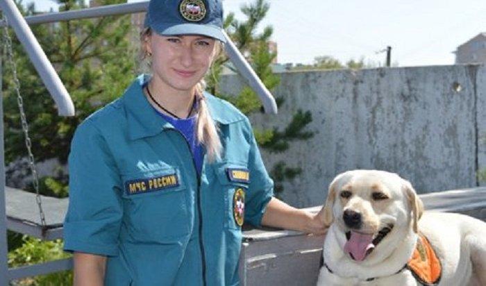Собака-ищейка Ирэль изИркутска прошла испытания вКрасноярском крае
