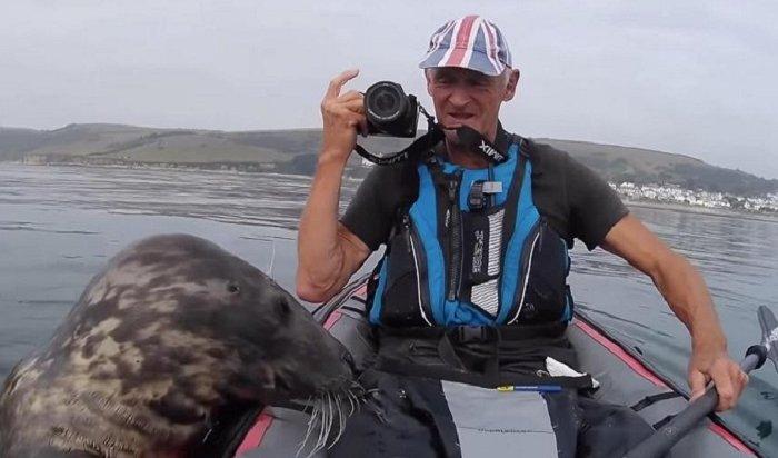 ВАнглии тюлень хотел покататься набайдарке, ноему недали (Видео)