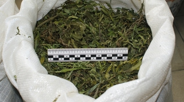 ВУсольском районе полицейские задержали мужчину сдвумя килограммами марихуаны