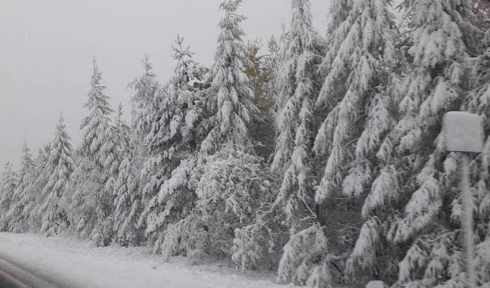 Снег пройдет вИркутске 1 и2ноября