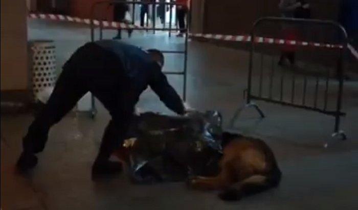 Встоличной подземке полицейский застрелил натравленного нанего пса (Видео)