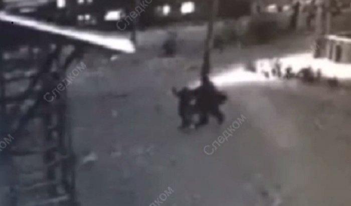 ВКрасноярском крае 10-летняя каратистка отбилась отпедофила (Видео)