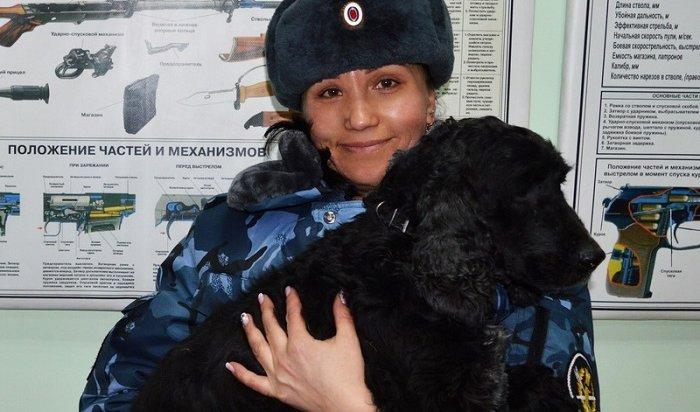 Пес Аякс помог полицейским обнаружить крупную партию «синтетики» вИркутске