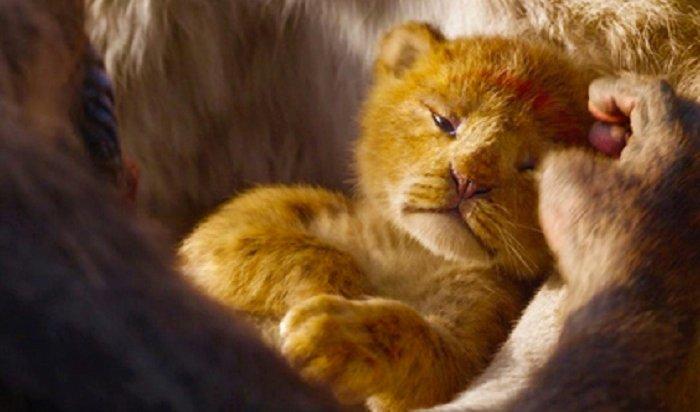 Трейлер нового «Короля Льва» побил рекорды просмотров (Видео)