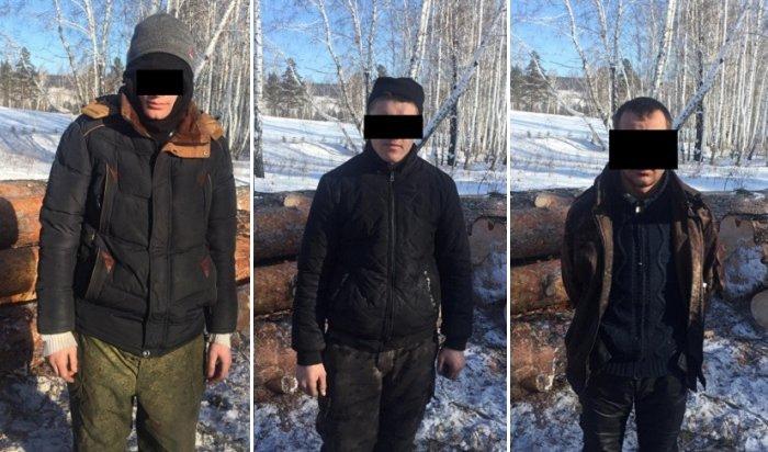 ВЗаларинском районе задержали группу черных лесорубов (Видео)