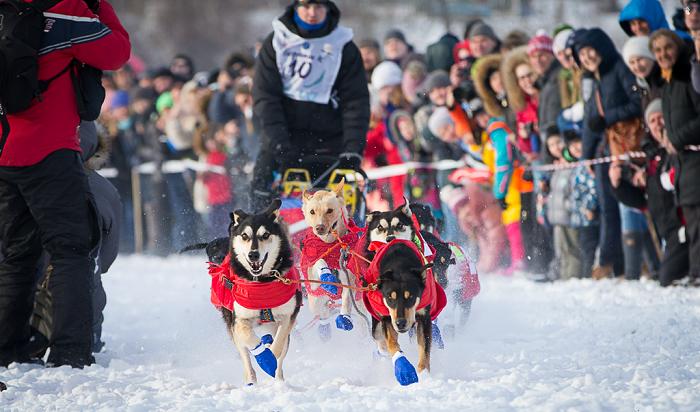 Зимниада-2019: Гонки насобачьих упряжках иконькобежный марафон