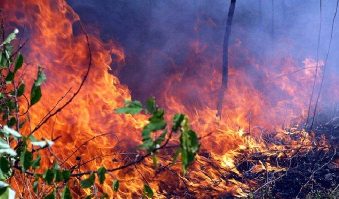 Натушение лесных пожаров вИркутской области необходимо полтора миллиарда рублей