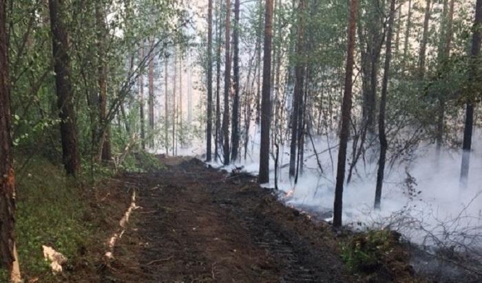 Особый противопожарный режим вИркутской области могут ввести с1апреля