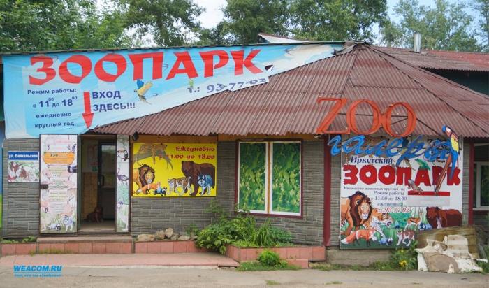 Иркутская зоогалерея летом планирует начать работу нановом месте