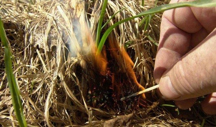 ВБратском районе задержали пенсионера, устроившего поджог сухой травы