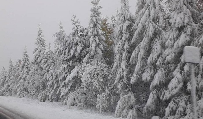 Дорожники дежурят нафедеральных трассах вИркутской области из-за ухудшения погоды