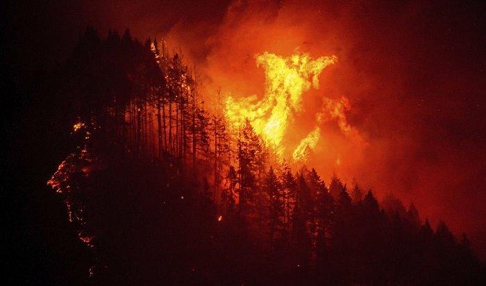 Три новых лесных пожара зарегистрировали засутки вИркутской области