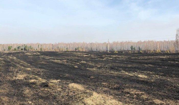 11лесных пожаров ликвидировали вИркутской области 25апреля