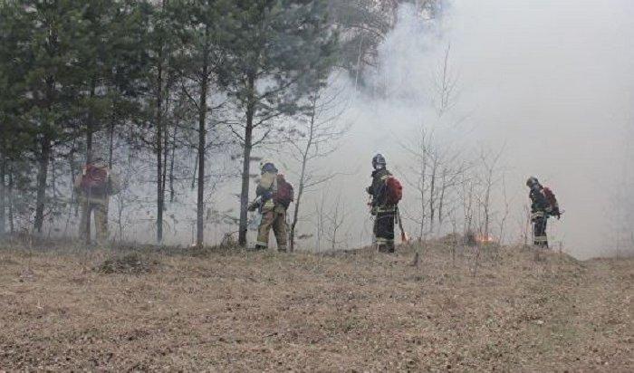 Хабаровск окутал дым отлесных пожаров