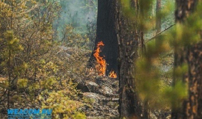 283пожара произошло натерритории Иркутской области сначала мая