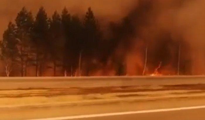 Вдвух районах Приангарья введен режим чрезвычайной ситуации из-за лесных пожаров (Видео)